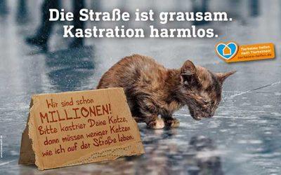 Petition des Deutschen Tierschutzbundes